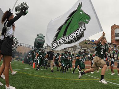 Stevenson University Athletics